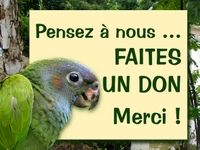 faites_un_don_zerodeforestation